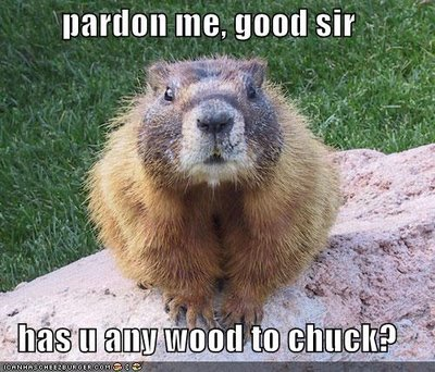 "The answer to ""How Much Wood Would a Woodchuck Chuck ..."